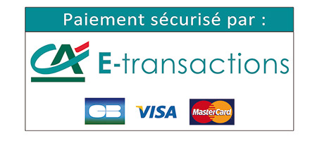 e-transactions secured payment